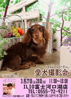 3月27日28日ILIO富士河口湖店様ポスターweb用 (002).jpg