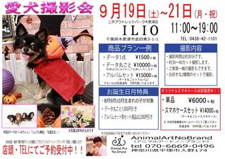 9月19日~21日ILIO三井アウトレットパーク木更津店様 チラシweb用.jpg